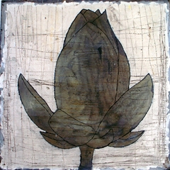 Lotus Gris